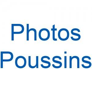 2018 - Poussins